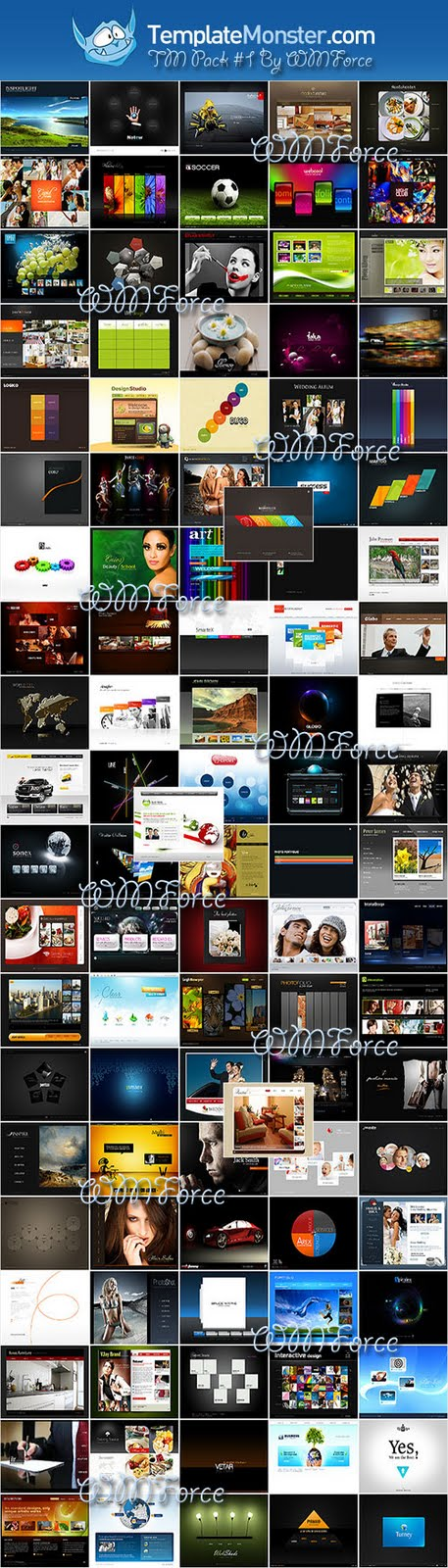 Template Monster Flash Templates Pack #1 By WMForce Team