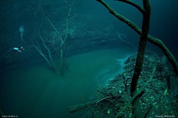 sungai+di+dalam+laut Misteri Sungai di Dalam Laut Mexico