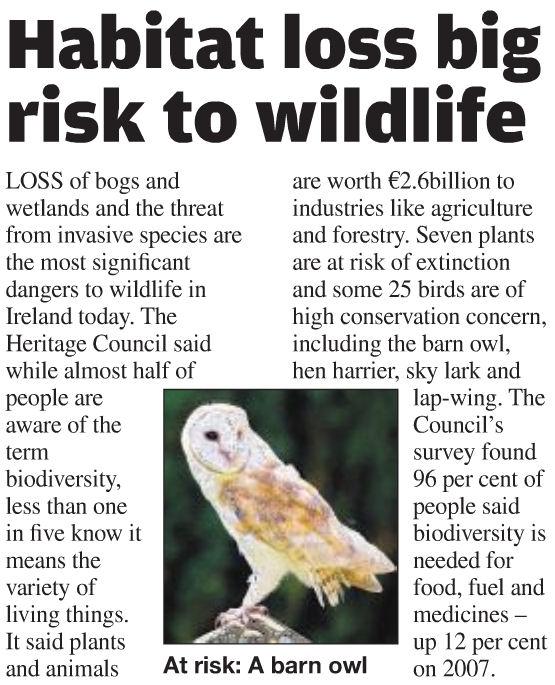 Essay about biodiversity