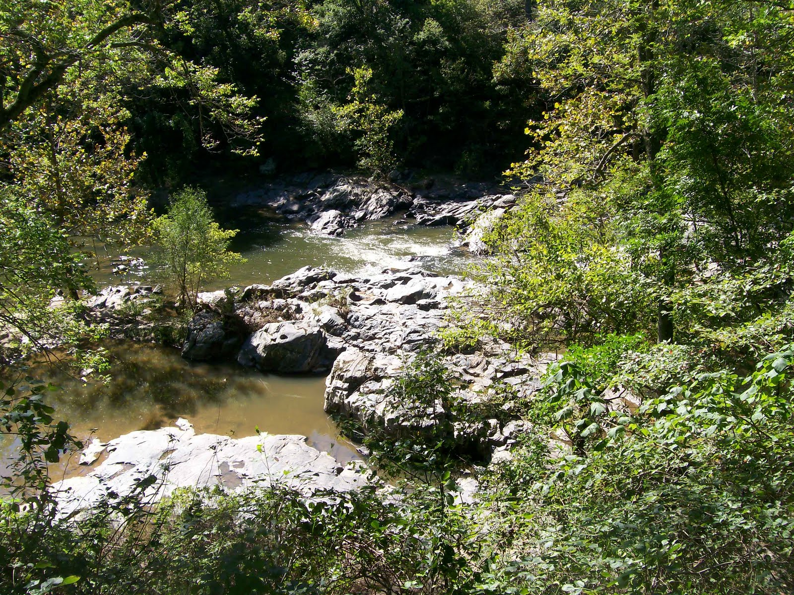 Kaselehlie Hiking At Gunpowder Falls State Park