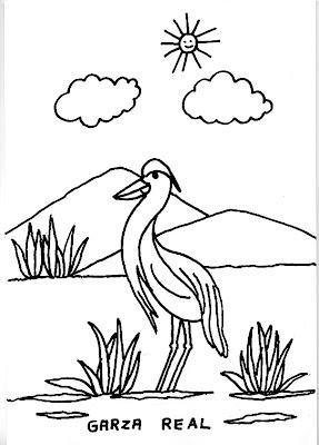 Dibujos para colorear varios dibujo de una garza en un for Imagenes de estanques para ninos