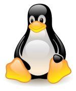 Migliori Distribuzioni Linux da installare per tutti i computer e le esigenze