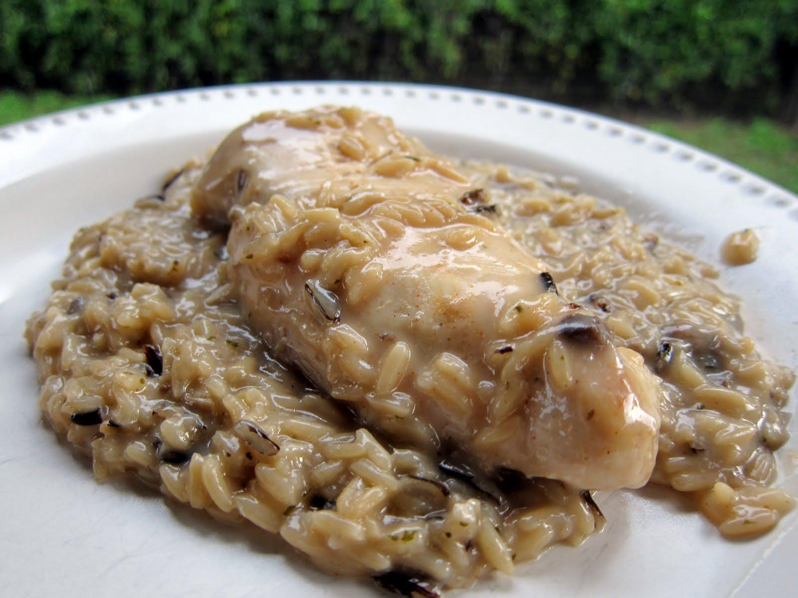 Slow Cooker Chicken & Rice | Plain Chicken