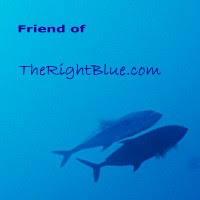 Friend of TheRightBlue.com