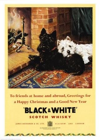 El Mundo Del Westie El Westie En La Publicidad Black White