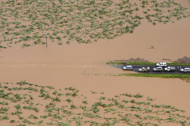 Dunk Island Australia Destroyed: Shirat Devorah: Yasi's Aftermath: Paradise Lost