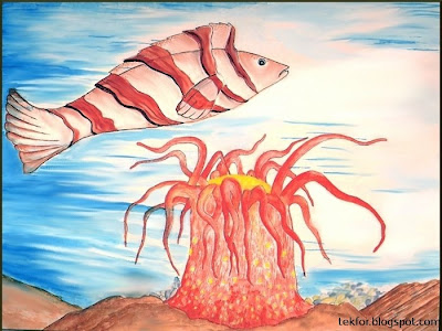 Fish and Sea Anemone.Watercolor painting.