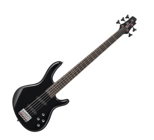 bass review for bassist cort action v a 5 string bass. Black Bedroom Furniture Sets. Home Design Ideas