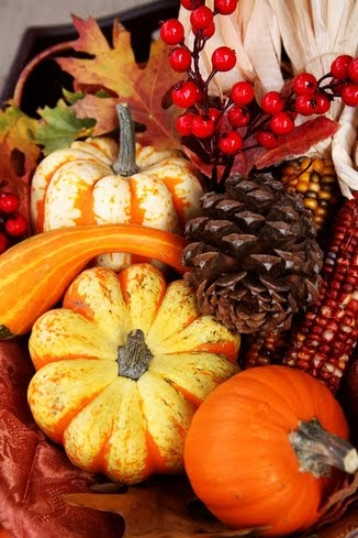 Fall And Autumn Wallpaper Continuing Education Resources Thanksgiving Day A Time