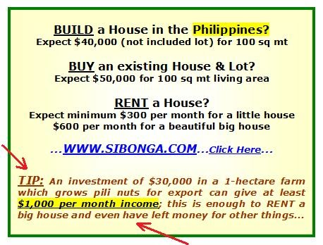 construction business plan in the philippines