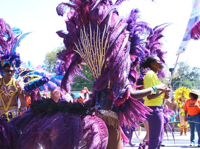 Alvanguard Photography 2009 Tribe Tyrian Purple
