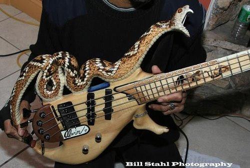 [snake-guitar.jpg]