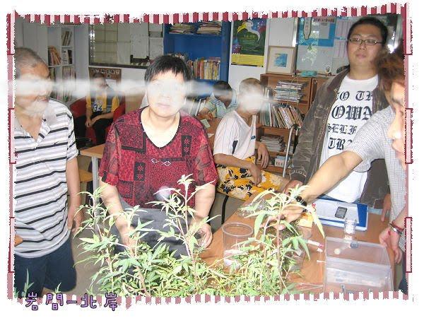 巖間-北岸: 99年園藝遊戲-春季團體~12-5:「色香味」-香草植物運用
