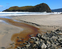 Lion Rock at South Cape Bay beyond a small tannin-stained creek - 6 Oct 2007