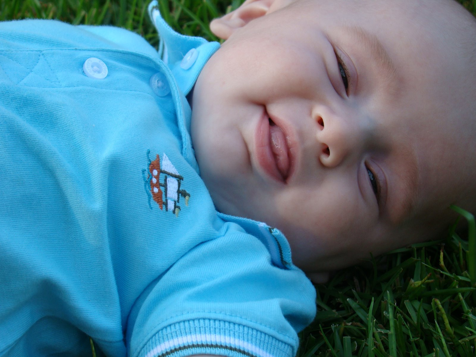 Baby's Temperament - The Journey of Parenthood