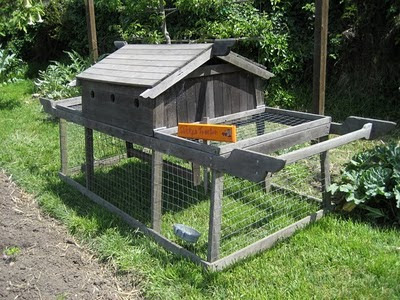 photo of chicken tractor at Edible Schoolyard