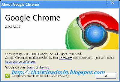 Google Chrome 2.0.172.33