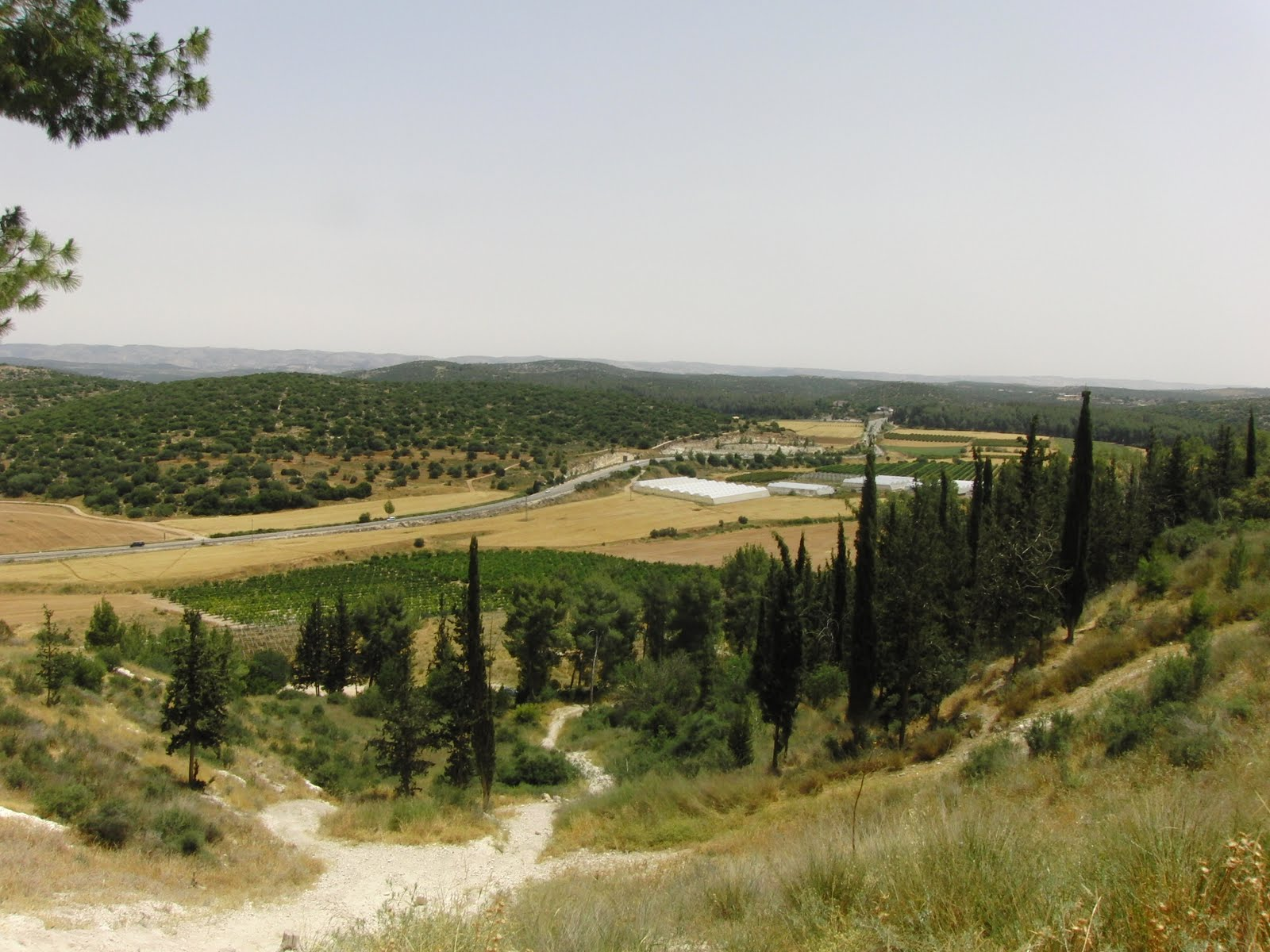 Field Of Joshua Of Beth Shemesh: Square Wheels: Jerusalem, David And Goliath, And The Ark