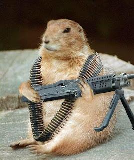 gambar lucu tikus pakai senjata