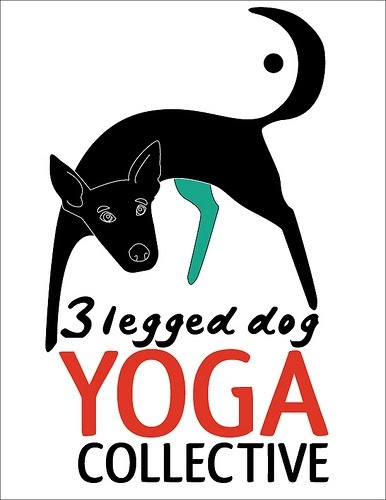3 legged dog Yoga Collective/ Practices with Donna Jay Rubin