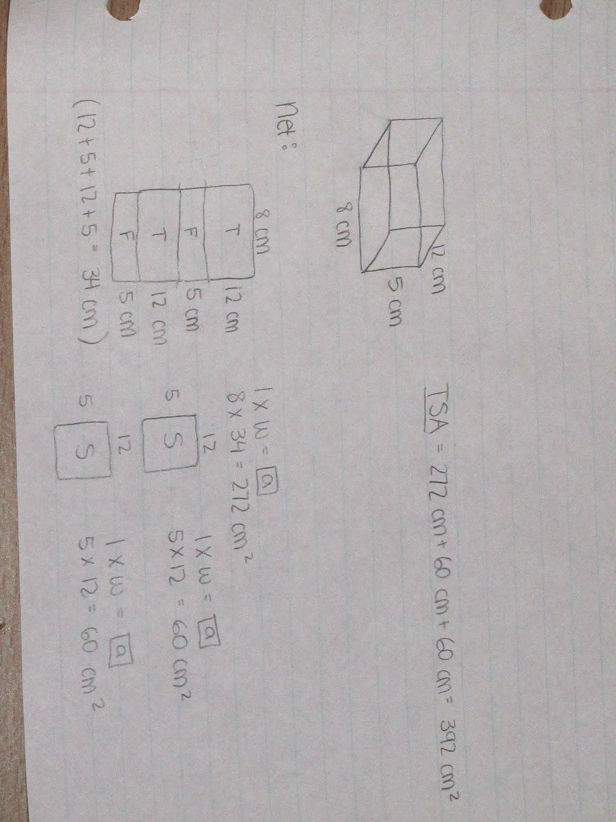 817 Math (2010): January 2011