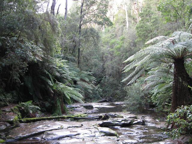 [creek.jpg]