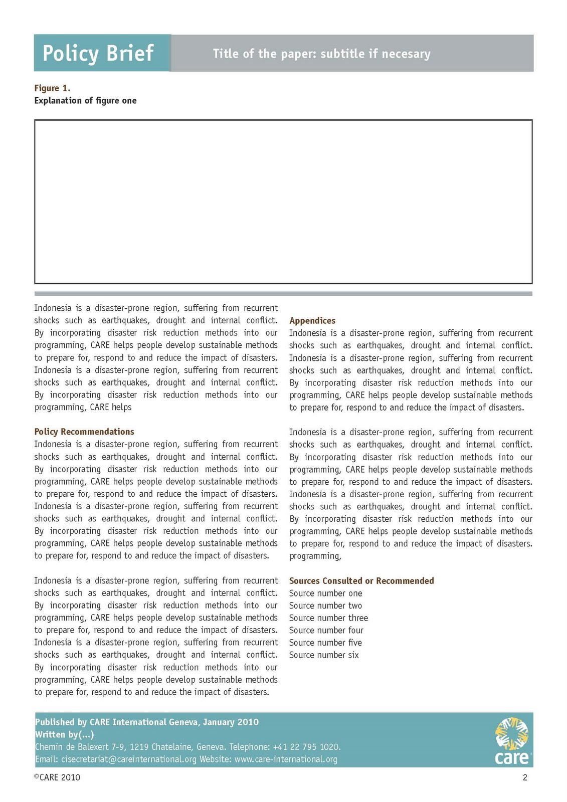 Mesmerized layout for Policy brief example template