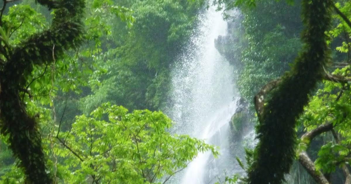 Graham and Kerry's Trinidad Blog  Trinidad And Tobago Maracas Falls