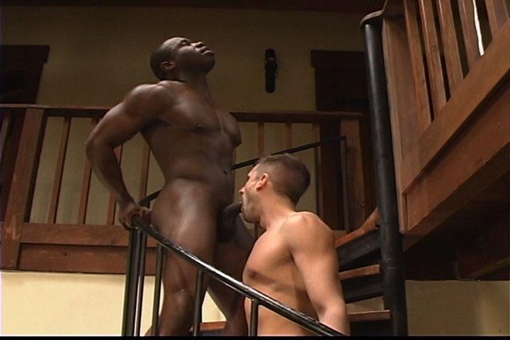 Marc Williams, Gay Porn Star