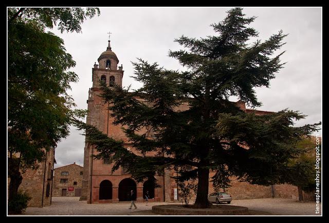 Colegiata Nuestra Señora de la Asunción Medinaceli