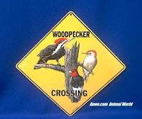Woodpecker Crossing Sign