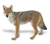 coyote toy miniature safari