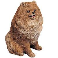 Sandicast Pomeranian figurine mid size