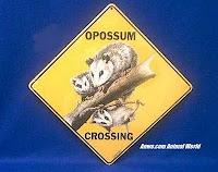 opossum crossing sign