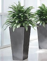 Bellarosa Designs Flower For Decor