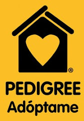 PEDIGREE ADOPTAME