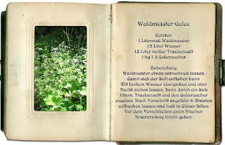 Waldmeistergelee