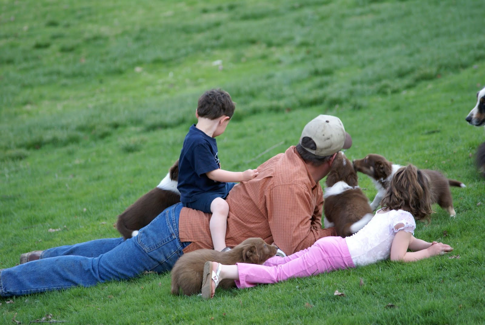 Life at Goodness Grows Farm: Where did those days go?