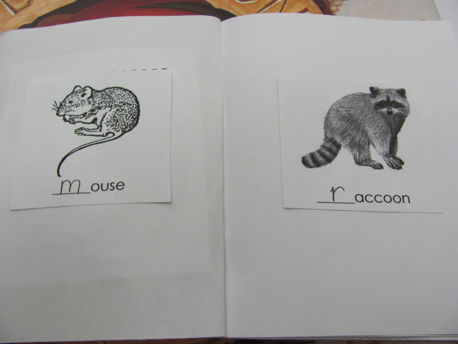 Hibernating Animals With Names
