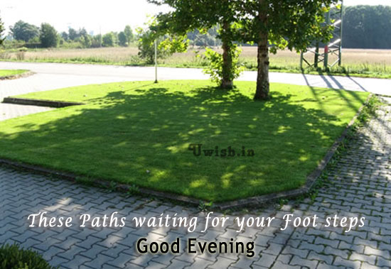 Good evening E greeting cards and wishes with evening walking paths.