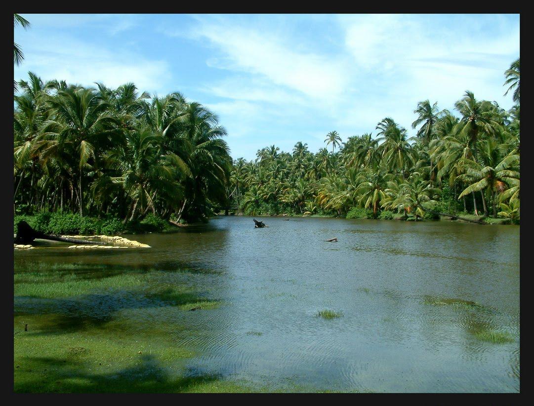 Swantham Malayali Ente Keralam