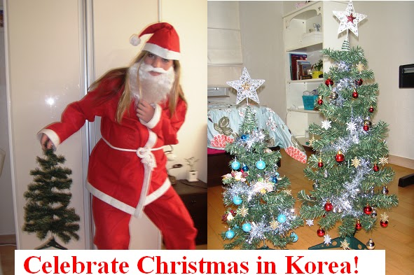 Christmas In Korea.Buying A Christmas Tree In Korea Gone Seoul Searching
