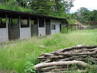 old prefab horse stables