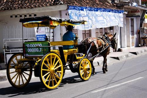 Andong, Transportasi Legendaris di Jogjakarta