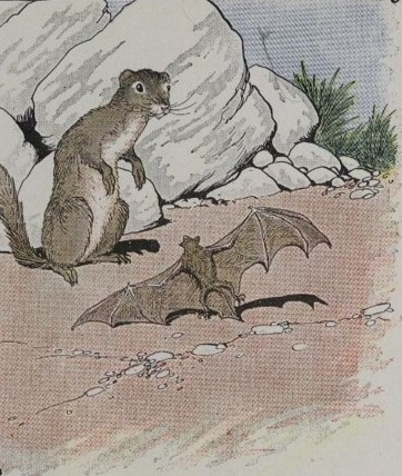 BEST FABLES STORY-THE BAT AND THE WEASELS