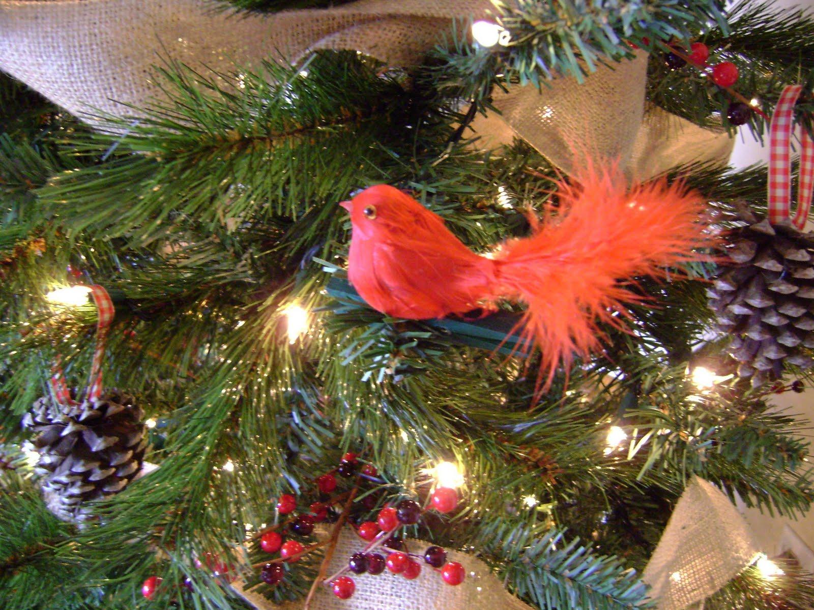 Design to Shine: My $20 Christmas Tree