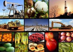 Sectores Productivos del Perú: Economia - Sectores productivos del ...