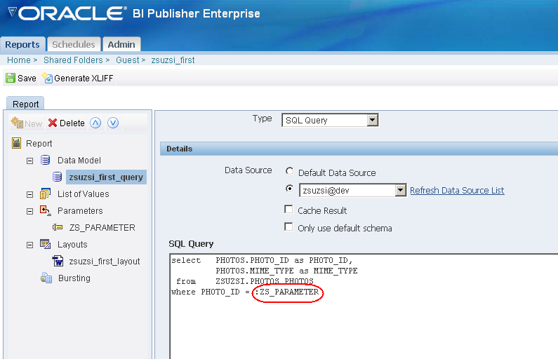Hil & Co IT Solutions: how to use parameters in BI Publisher