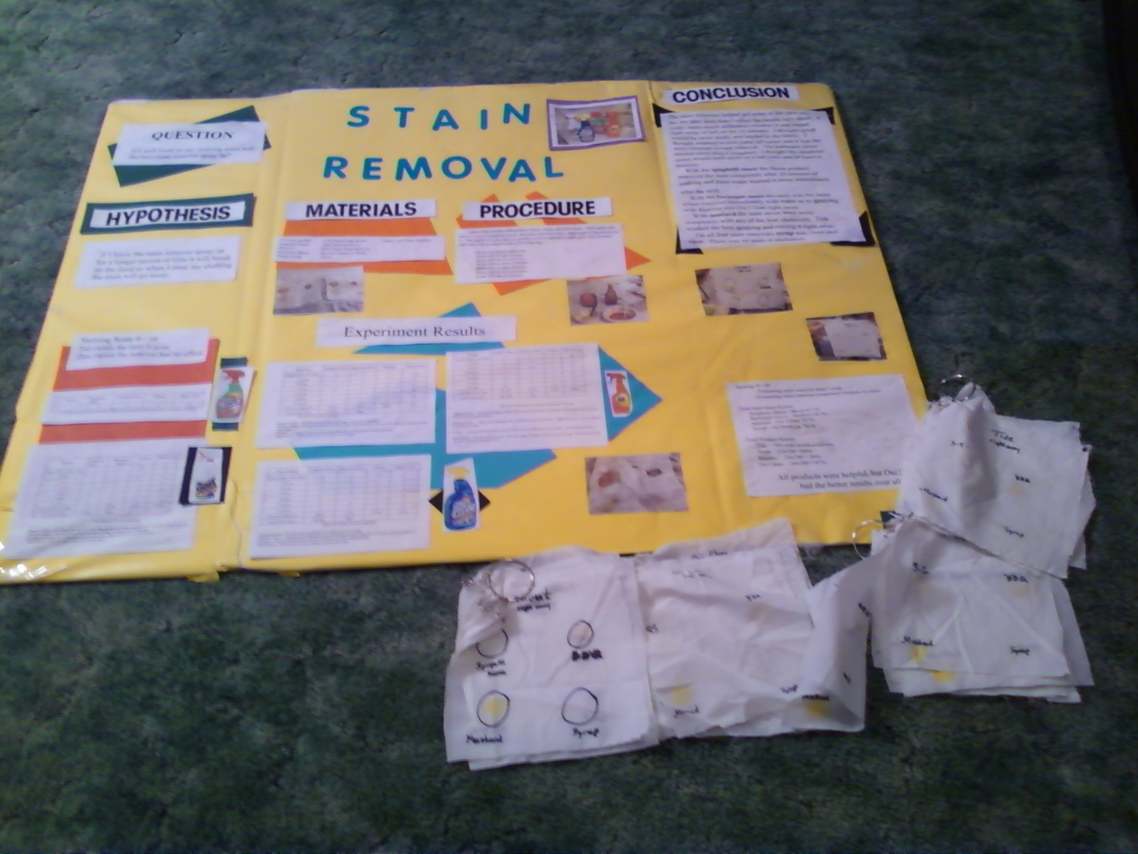 Criman Family Kyle S Science Project