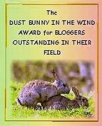 "NITEBYRD'S PERSONAL "" DUST BUNNY IN THE WIND"" AWARD FOR BLOGGERS OUTSTANDING IN THEIR FIELD"